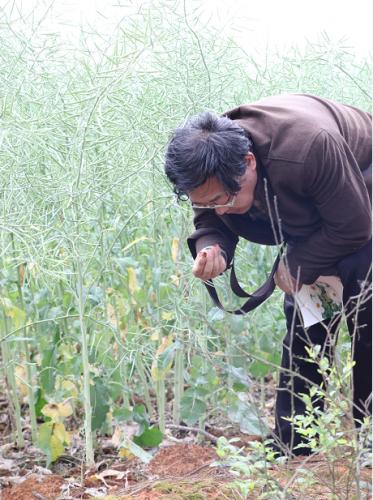 集团特邀中国青年博士联盟副会长金语博士为进贤农业项目调研
